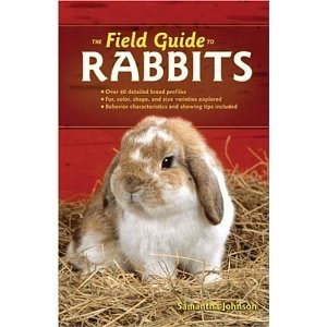 the-field-guide-to-rabbits